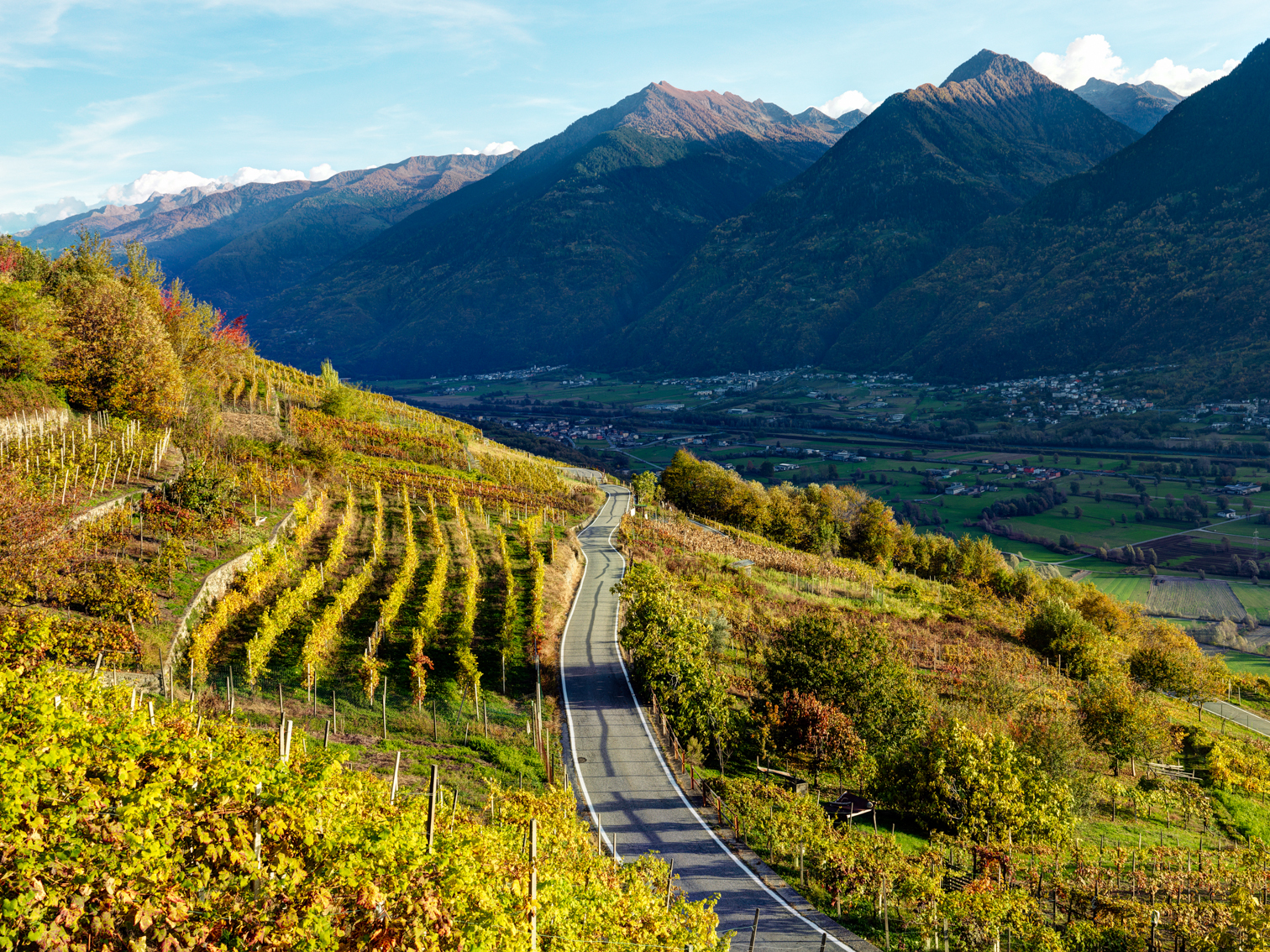 Valtellina Wine Road