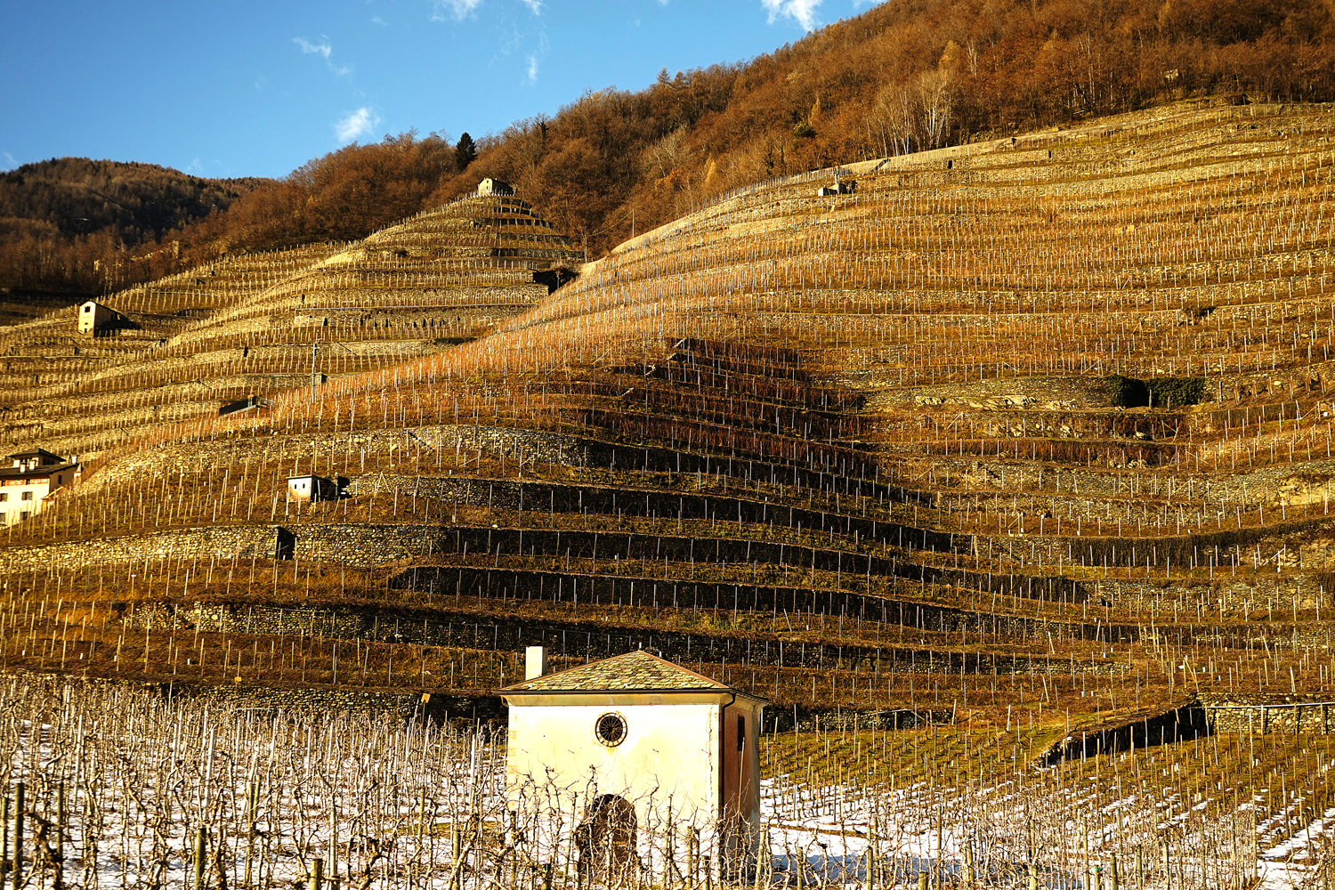 67 kilometres of panoramic road among the terraced vineyards